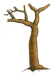 Small Picture Tree Outline Coloring Page Simple Dead Tree Outline Coloring Page