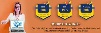 Wordpress Design India Professional Wordpress Website Design Wordpress Website