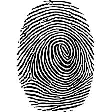 Ai Vector And In Eps Image Art Clip Format Free - Fingerprint