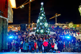 Owen Sound Festival Of Lights 2018 Surrey Events Guide For Nov 21 And Beyond Surrey Now Leader
