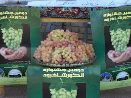 Image result for مراسم محلی جشنواره انگور