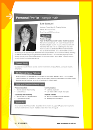 Personal Resume Website Example Profile Title Examples Savebtsaco 19