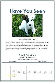 Dog Flyer Template Free Lost Animal Flyer Template Free Lost Cat Flyer Template Poster