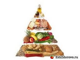 Рациональное питание образ жизни и основы рациональное питание и организм человека