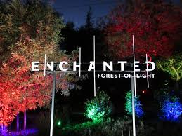 Enchanted Forest Of Lights Descanso Descanso Gardens Transports You Into A Holiday Enchanted Forest
