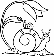 Small Picture Top Snail Coloring Page Gallery Kids Ideas 5929 Unknown
