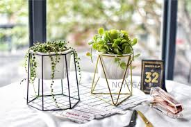 Adorable ceramic plant stand ideas for garden Potted Plants Cool 55 Adorable Ceramic Plant Stand Ideas For Garden More At Https Pinterest 55 Adorable Ceramic Plant Stand Ideas For Garden Bathroom