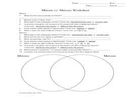 mitosis vs meiosis worksheet worksheet hot resources for  this complete worksheet includes short answer and multiple choice questions as well as a venn diagram for comparing and contrasting mitosis meiosis