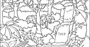 rainforest trees colouring pages tropical coloring for kids printable tropical rainforest flowers coloring pages