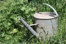 metal gardening water pot stock photo 84331790