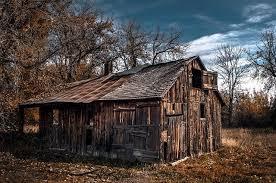 brilliant farm essay