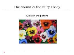 annabelle strait s portfolio ppt  the sound the fury essay