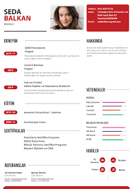 03 Red Creative Resume Template Psd Setpdf Docdroid