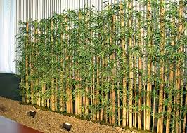 Small Picture Garden Design Garden Design with Bamboo Garden Nursery with