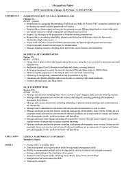 Sale Coordinator Resume Samples Velvet Jobs