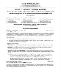 Program Manager Resume 2016 Good Project Manager Resume Samples