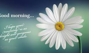 31 good morning greetings pictures and