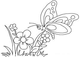 Disegno Di Fiore Con Farfalla Da Stampare Gratis E Da Colorare Per
