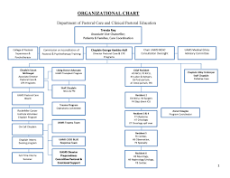 Org Chart Program Organizational Chart Pastoral Care Clinical Pastoral