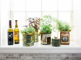 Display Them on the Window. Windowsill Herb Garden