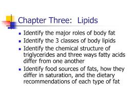 ppt chapter three lipids powerpoint