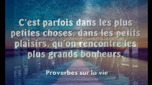 Citations Et Proverbes D Amour Youtube Et Proverbe Sur La Patience