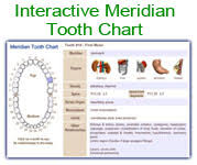 Tooth Meridian Chart Meridian Tooth Chart Toothbody