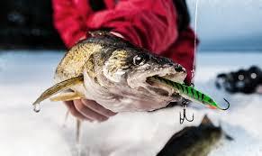 best walleye ice fishing rods 2020