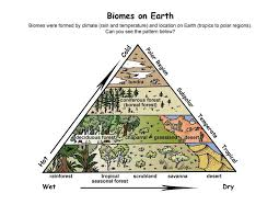 Fill In The Chart With Information About Each Biome Under Construction 1 12 15 1 Create The Chart Below Into