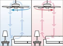 ceiling fan direction for summer and winter