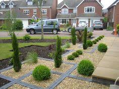 Small Picture Topiary Box balls GAP Photos Specialising in horticultural