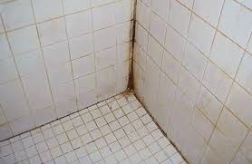 how to remove mildew from shower mildew on bathroom ceiling interesting mold mildew bathroom shower free how to remove mildew from shower