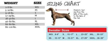 Black Skull Dog Sweater