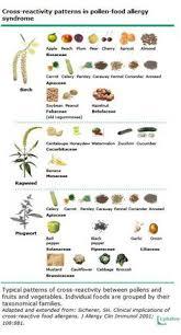 Pollen Food Allergy Chart 13 Skillful Allergy Cross Sensitivity Chart