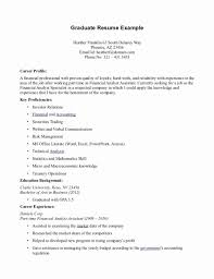 Sample Profile Statement For Resume Resume Profile Examples Unique 100 Cover Letter Template for Sample 89