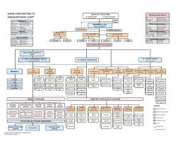 Organized Management Hierarchy Chart Template Corporate