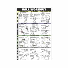 Back Exercises Gym Chart Swiss Ball Workout Poster 2 Laminated