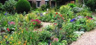 Image result for ​Perennial Gardening