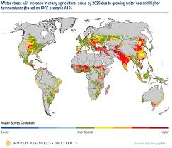 Food Security And Why It Matters World Economic Forum
