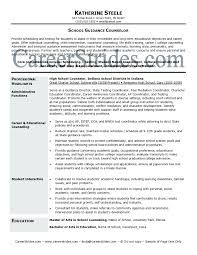 Financial Aid Counselor Resume Funky Financial Aid Advisor Resume Examples Frieze Documentation 21