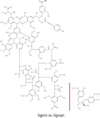 Lignin lignan3