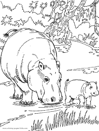 Hippo Drawing For Kids At Getdrawingscom Free For Personal Use