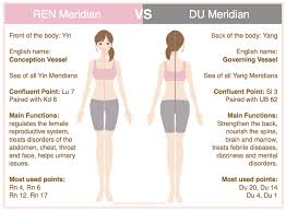 Acupuncture Points For Fertility Chart Th 8 Extraordinary Vessels Ren Acupro Academy