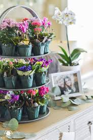 southern garden party bridal shower ideas small potted flowers as guest favors
