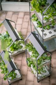 new from ikea a hydroponic countertop garden kit