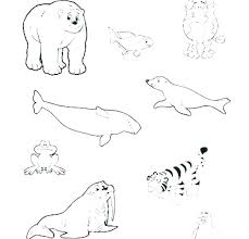 Baby Animal Coloring Cute Coloring Pages Of Baby Animals Cute Animal