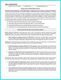 Individual Training Plan Template Doc Employee Development Examples