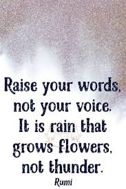 Rain Quotes Simple Raise Your Words Not Your Voice It Is Rain That Grows Flowers Not