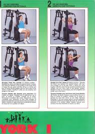 Multi Gym Wall Chart Exercise Routines York 401 Multi Gym Exercise Routines