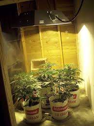 fresh closet grow room creative ideas recommendation setup ventilation roselawnlutheran